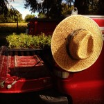 Little Miami Farms - Amy Forsthoefel -- 2014-09-27.jpg